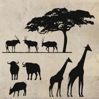 Samolepka na zeď Africké zátiší 001