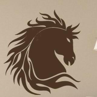 Samolepka na zeď Kůň 003