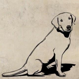 Samolepka na zeď Labrador 003