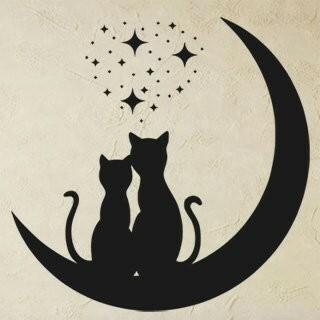 Samolepka na zeď Dvě kočky 0475
