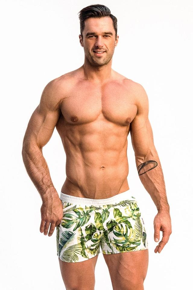 756c79651 Pánské plavkové šortky Alpha Male Playo Palm