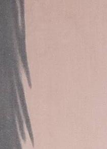 Dámská šála Bruno Rossi SZ-218 Stínovaná - univerzální - béžová-šedá