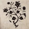 Samolepka na zeď Květiny 031 (146271) - 1