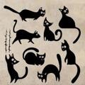 Samolepka na zeď Sada koček 0428 (576037) - 1