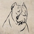 Samolepka na zeď Doga 002 (146947) - 1