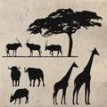 Samolepka na zeď Africké zátiší 001 (146047) - 1