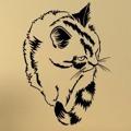 Samolepka na zeď Kočka 0427 (576036) - 1