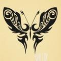 Samolepka na zeď Motýl 012 (146382) - 1