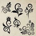 Samolepka na zeď Sada ornamentů 001 (146571) - 1