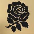 Samolepka na zeď Růže 0200 (572534) - 1