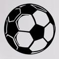 Samolepka na zeď Fotbalový míč 0572 (577005) - 1