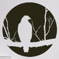 Samolepka na zeď Pták 002 (146514) - 1