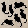 Samolepka na zeď Sada koček 0509 (576298) - 1