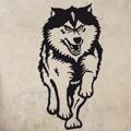 Samolepka na zeď Husky 001 (146172) - 1