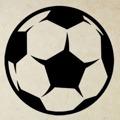 Samolepka na zeď Fotbalový míč 009 (147319) - 1