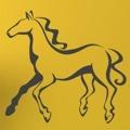 Samolepka na zeď Kůň 028 (147031) - 1