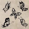 Samolepka na zeď Sada motýlů 002 (146569) - 1
