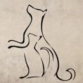 Samolepka na zeď Kočka a pes 0538 (576729) - 1
