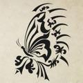 Samolepka na zeď Květiny s motýly 003 (146287) - 1