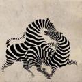 Samolepka na zeď Zebra 010 (146769) - 1