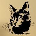 Samolepka na zeď Kočka 0489 (576278) - 1