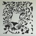 Samolepka na zeď Tygr 008 (146734) - 1