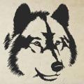 Samolepka na zeď Vlk 1406 (911561) - 1