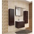 Skříňka koupelnová se zrcadlem wenge WE14 TK3067 (597413) - 3